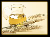 Масло Зародышей пшеницы водорастворимое 25 мл / 1л