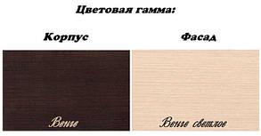 Прихожая Эвита Венге / Венге светлый (Світ Меблів TM), фото 2