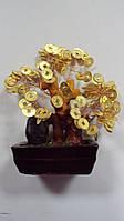 Денежное дерево керамическое размер 11*17