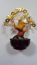 Грошове дерево керамічне розмір 15*8