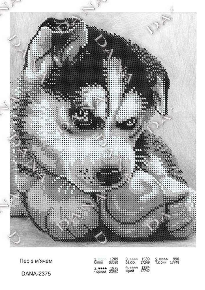 А4 формат Собака с мячом