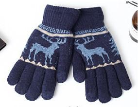 Перчатки утепленные для сенсорных экранов Brumal blue