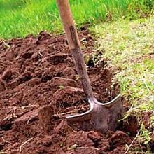 Удобрения для заправки почвы перед посадкой