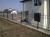 Заборы и ворота сварные, фото 2
