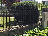 Забор кованый, фото 2