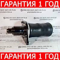 Пневмобаллон задней подвески AUDI A6 (C5) правый, фото 1