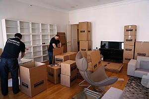 Квартирний переїзд Бердичів