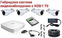 Система видеонаблюдения гибридная для наружной установки (с HDD 1000 Гб)
