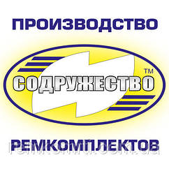 Ремкомплект паливного насоса високого тиску (ТНВД+КЛАПАНА+прокладки) КамАЗ