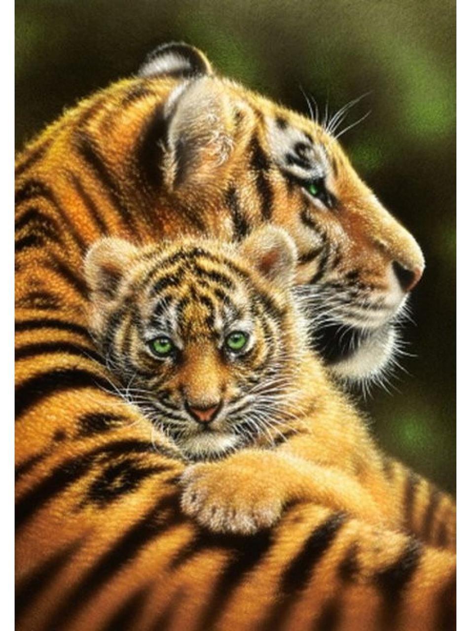 """Алмазна вишивка 40x30 см - набір """"Тигриця з малюком 2"""""""