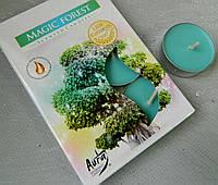 Свічка таблетка Магічний ліс №27234, 4*1,5 см Свеча таблетка Магический лес