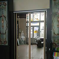 Двери раздвижные  для шкафа купе, фото 1