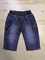 Шорты джинсовые на мальчика оптом, Seagull, 140