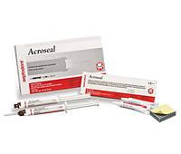 Acroseal,  база * 8,5 г + 9.5 каталізатор