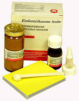 Endomethasone Ivory, набір, 1 порошок * 14 г + 1 рідина * 10 мл
