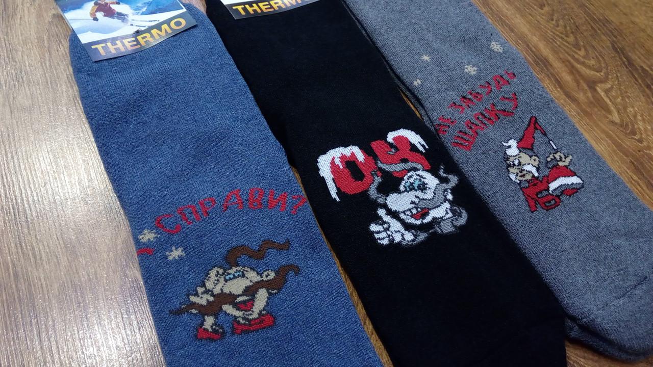 Мужские махровые носки, «Термо Козаки» 27-29(41-44)