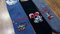 Мужские махровые носки, «Термо Козаки» 27-29(41-44), фото 1