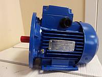 Электродвигатель АИРМУТ63А4 (АИР 63 А4) 220 В, 0,25 кВт, 1500 об/мин