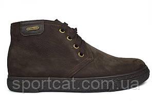 Мужские зимне ботинки Madoks