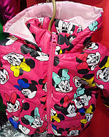 Детское демисезонное куртка оптом 1-4 года малина