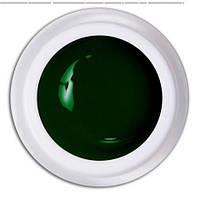 Гель краска Magic Gel Color 5ml  №716 Зеленый