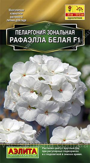 Пеларгония Рафаэлла F1 белая 5 шт. (Аэлита)