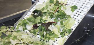Транспортерні харчові Habasit для транспортування фруктів і овочів