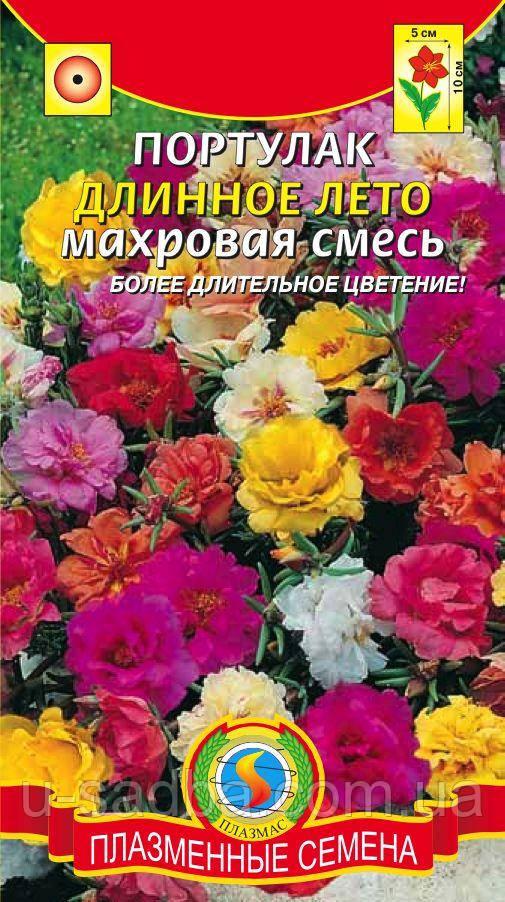 Семена цветов  Портулак махровый Длинное Лето 0,1 г смесь (Плазменные семена)