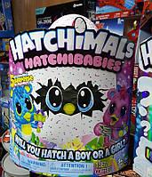 Интерактивная питомец малыш Хетчималс в яйце Читри, Hatchimals HatchiBabies, Spin Master Оригинал из США