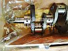 Вал коленчатый Д-240, Д-243 (упаковка деревянный ящик) (качество !). Вал колінчастий Д-240, фото 8