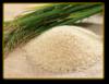 Масло Зародышей риса водорастворимое, 50 мл/ 1 л
