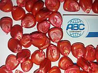 Посевная кукуруза ДБ ХОТИН ФАО 260. Высокоурожайный гибрид ХОТИН  65-85 ц/га. Влагоотдача 14-16%. Урожай 2018г, фото 1