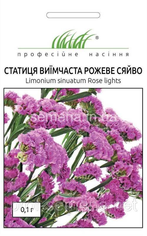 Статиця (кермек) Рожеве сяйво 0,1 г