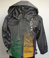 Курточка для мальчика в расцветках оптом