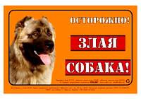"""Collar Табличка металлическая 20х13см """"Злая собака"""" (кавказец)"""