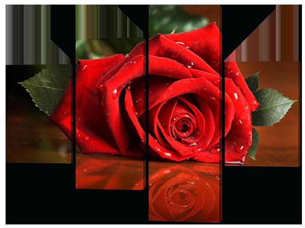 Модульная картина Interno Холст Отражение розы 106х78см (R409S)