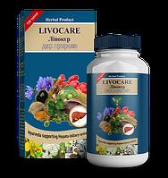 Ливокер - растительный препарат для здоровья печени, фото 1