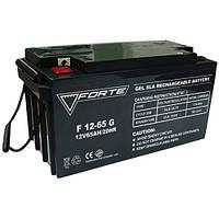 Аккумулятор гелевый FORTE F12-65G