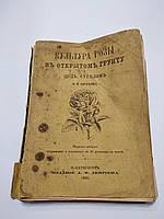 Кичунов Н. Культура розы в открытом грунту и под стеклом. 1895 год