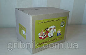 Грибна коробка для вирощування печериць