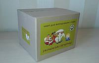 Грибная коробка для выращивания шампиньонов 3 в 1