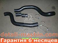 Патрубки радиатора ВАЗ 2110 2111 2112 (шланги + хомут) №88РШХ (пр-во БРТ)