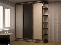 Шкаф трехдверный 220*1740*592 мм на заказ