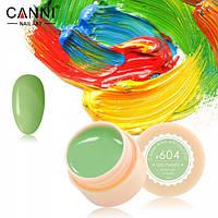 Гель-краска Canni 604 5мл