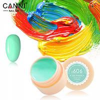 Гель-краска Canni 606 5мл