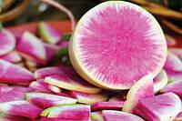 Семена редьки розовый блеск мисато,  1 кг Польша