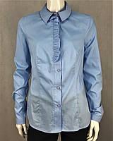 Рубашка женская хлопковая голубая классическая на пуговицах с длинным рукавом с рюшем