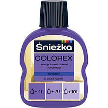 Пігмент Colorex №53 фіолетовий 100 мл