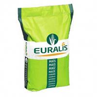 Семена кукурузы Euralis Кроссман Пончо