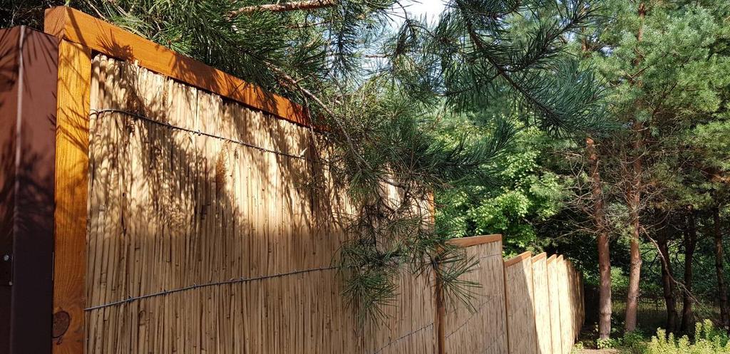 Декоративное ограждение из камыша в рамке дерево